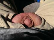 Driving down the freeway with my little shriveled up penis soaking up the sun! Passed numerous truckers, but obviously they didn't notice my small limp penis hanging out!