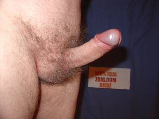 Another firm erection awaiting some fun