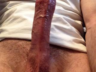 just stroking my cock one day.