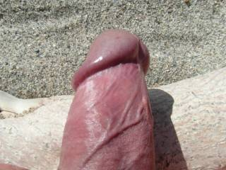 my cock at the beach