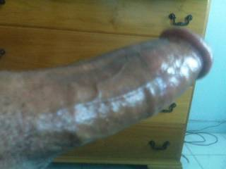 my rock hard cock. look at the veins making it even harder