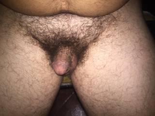 My little hairy dick!!!