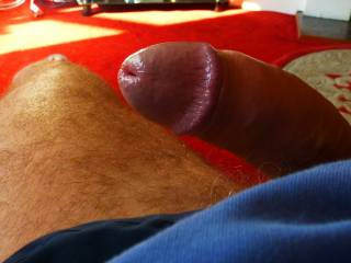 hope you like my wet cock, would any one suck me please