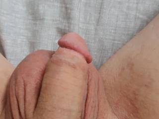 Just a pic of my soft cock. Could you get me hard?