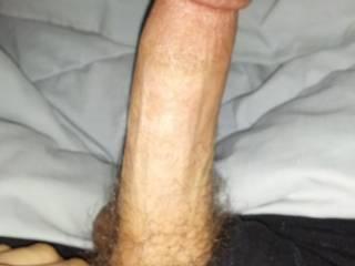 my hard cock